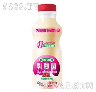 达利经典乳酸菌发酵饮品草莓味