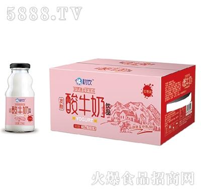 初饮酸牛奶饮品红枣味248mlx15瓶