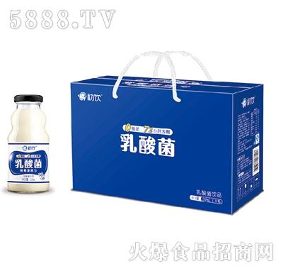 初饮乳酸菌248mlx8瓶