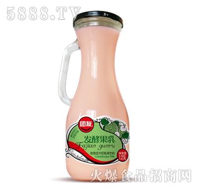 团友发酵果乳哈密瓜牛奶乳味饮料1.25L