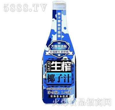 新光阳大岛突击队生榨椰子汁1.25L