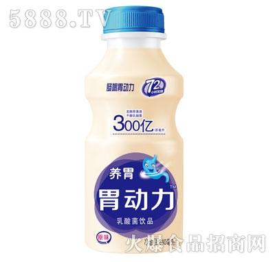 优牛养胃胃动力原味乳酸菌340ml