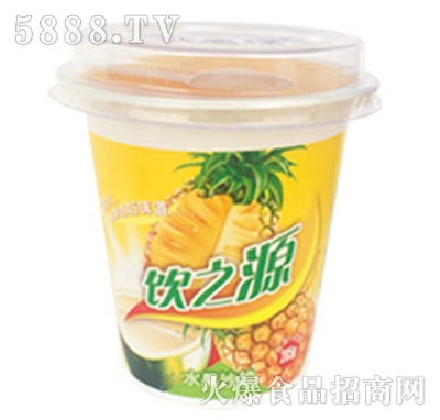 285g饮之源水果沙拉菠萝+椰果