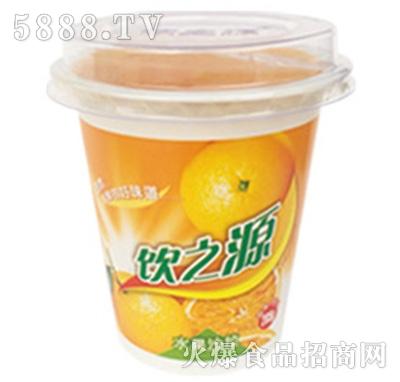 285g饮之源水果沙拉桔子+椰果产品图
