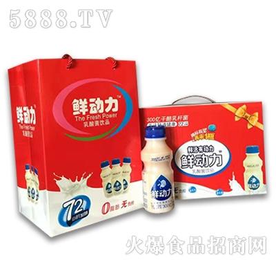 鲜动力乳酸菌饮品330mlx15瓶