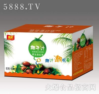 鹰航红枣椰汁480mlx15瓶