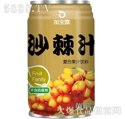 加宝露沙棘汁果汁饮料310ml