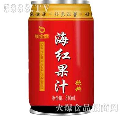 加宝露海红果汁饮料310ml