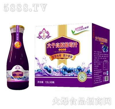 六个高原蓝莓汁1.5LX6瓶