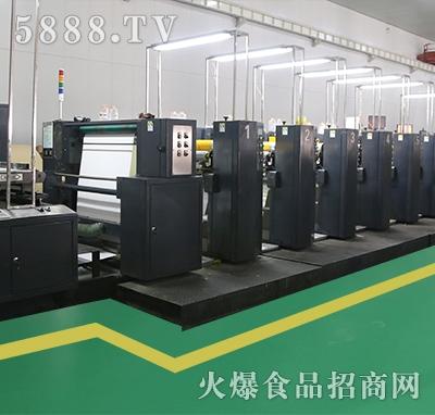 绿色环保大型柔版印刷机