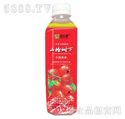琅津山楂树下果汁果肉饮料