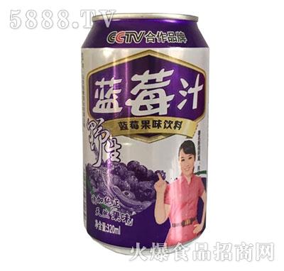 野生蓝莓汁果味饮料320ml