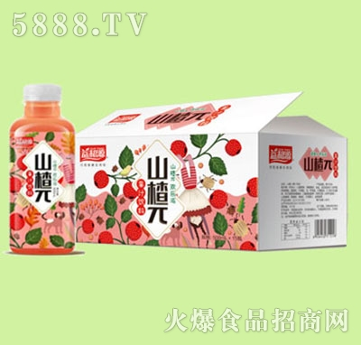 益和源山楂π果汁饮料箱装