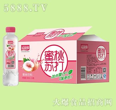 益和源蜜桃苏打果味饮料420mlx12瓶