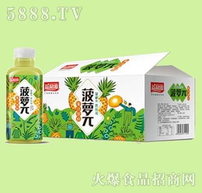 益和源菠萝π果汁饮料箱装