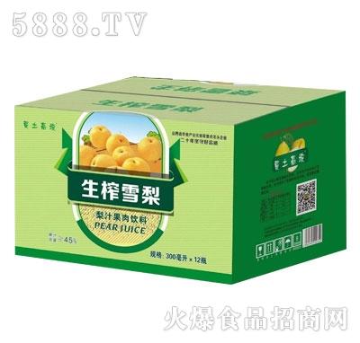 黄土高坡梨汁果肉饮料300mlX12瓶