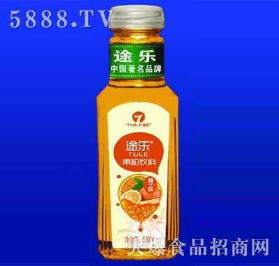 途乐果粒饮料橘子味520ml