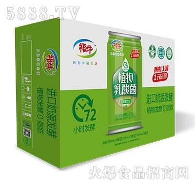 福牛植物乳酸菌310ml罐外箱