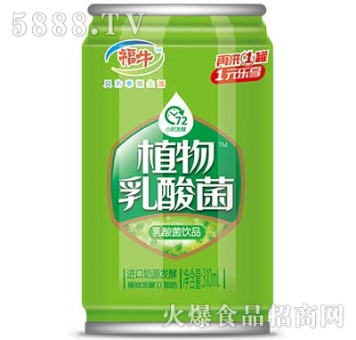 福牛植物乳酸菌310ml罐