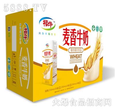 福牛麦香牛奶复合蛋白饮品(箱)