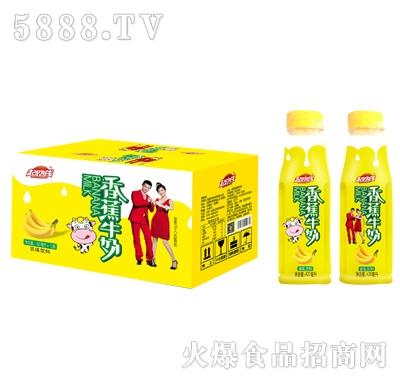 起跑线香蕉牛奶420mlx15瓶
