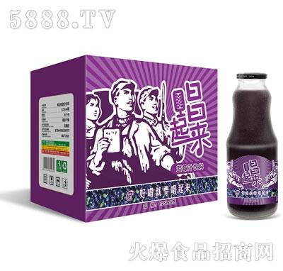 唱起来蓝莓汁1.25Lx6瓶