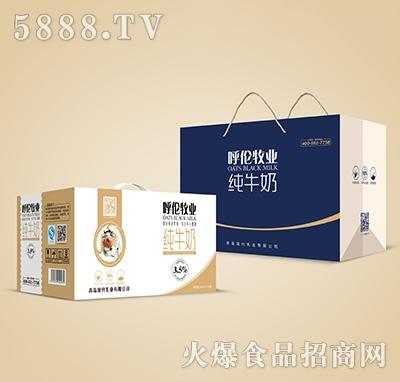 呼伦牧业纯牛奶250mlx12盒