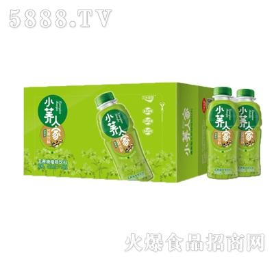 绿梦小荞人家(清爽型)苦荞饮料480mlx15瓶