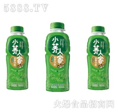 绿梦小荞人家(活力型)苦荞饮料480ml