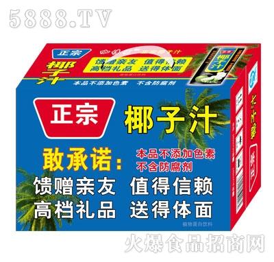 正宗椰子汁植物蛋白饮料(箱)