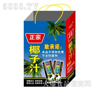 正宗椰子汁植物蛋白饮料(袋)