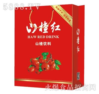 可爱宝山楂红山楂饮料(手提)