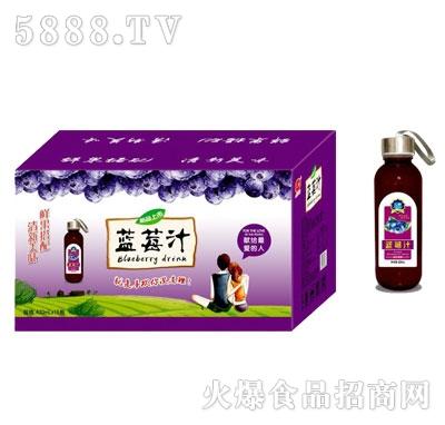汇甜蓝莓汁420mlX15瓶