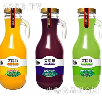 1.25L手柄瓶-3款芒果、蓝莓、猕猴桃单个并层