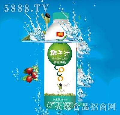 鹰航椰子汁480ML