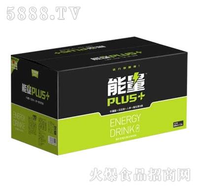 能量PIUS+功能饮料(箱)