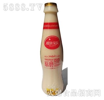 椰花香椰子汁 来自海南岛的健康饮品