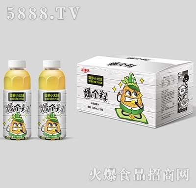 乐事达爆个料冷萃菠萝汁500ml