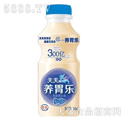 天天养胃乐乳酸菌原味340ml