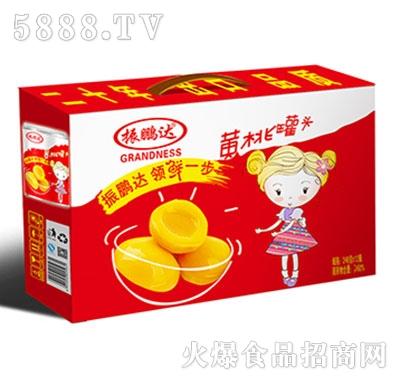 振鹏达248克铁罐黄桃罐头外箱