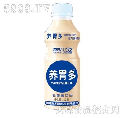养胃多乳酸菌饮品1.25L