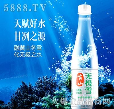 黄山无极雪饮用水