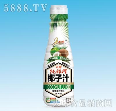 正宗纯鲜榨椰子汁500ml