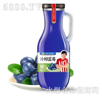 三九饮品冷榨蓝莓汁1.5L