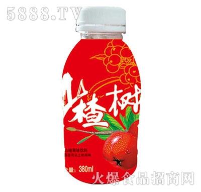 山楂树了山楂果味饮料380ml