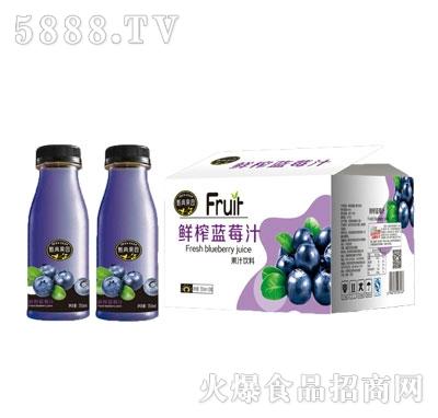 甄典果园鲜榨蓝莓汁350mlx20