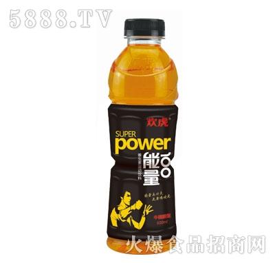 欢虎能量100瓶装600ml