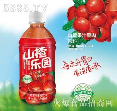 山楂乐园山楂果汁果肉饮料380ml