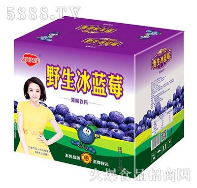 金娇阳野生冰蓝莓果味饮料