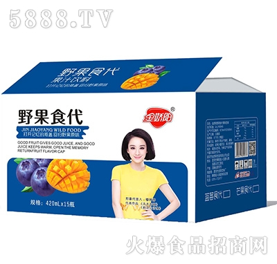 金娇阳野果食代箱子420ml15瓶